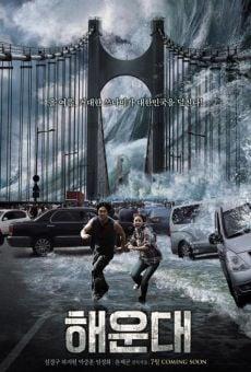 Ver película Tsunami (Haeundae)