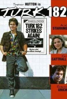 Ver película Turk 182