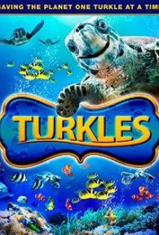 Ver película Turkles