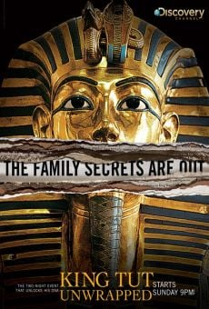 King Tut Unwrapped Online Free