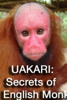 Ver película Uakari: Secrets of the English Monkey