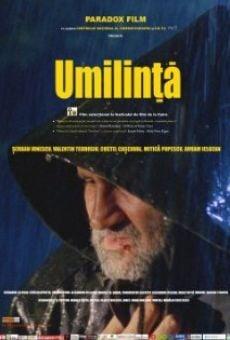 Ver película Umilinta