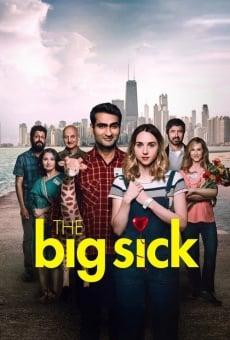 The Big Sick on-line gratuito