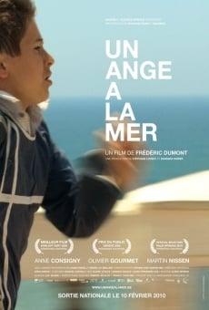 Ver película Un ange à la mer