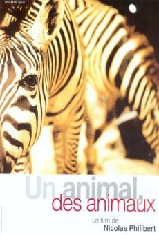 Un animal, des animaux on-line gratuito