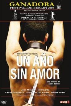 Ver película Un año sin amor