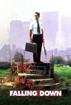 Ver película Un día de furia