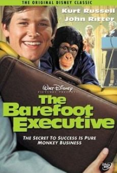 The Barefoot Executive on-line gratuito