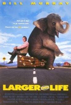 Ver película Un elefante llamado Vera