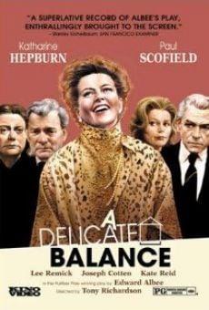 Ver película Un equilibrio delicado