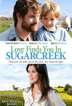 Love Finds You in Sugarcreek, Ohio online