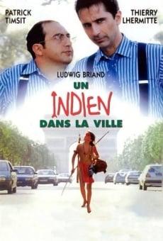 Ver película Un indio en París