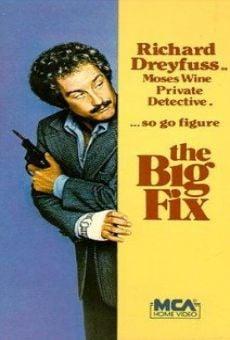 The Big Fix en ligne gratuit