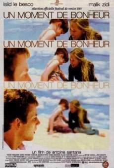 Ver película Un moment de bonheur