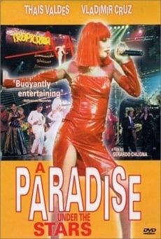 Ver película Un paraíso bajo las estrellas