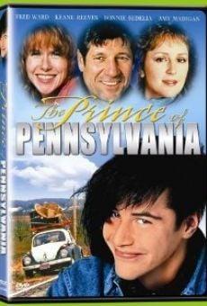 Ver película Un príncipe en América