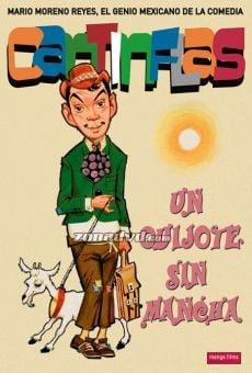 Ver película Un Quijote sin mancha