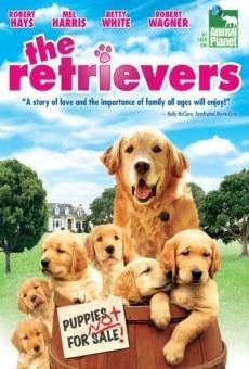 Ver película Un retriever y seis más