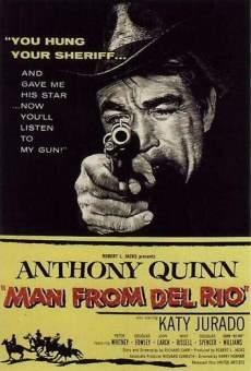 Ver película Un revólver solitario