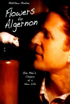 Flowers For Algernon on-line gratuito