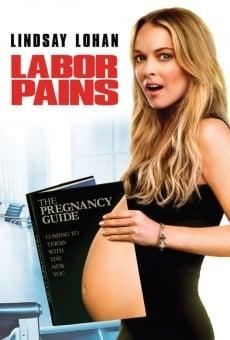Ver película Un trabajo embarazoso