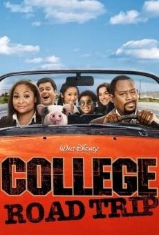 In viaggio per il college online