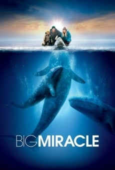 Big Miracle on-line gratuito