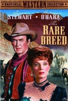The Rare Breed on-line gratuito