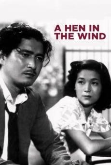 Película: Una gallina en el viento