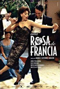 Una rosa de Francia online
