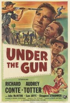 Ver película Under the Gun