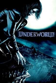 Ver película Underworld