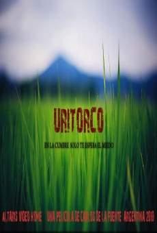 Ver película Uritorco, en la cumbre solo te espera el miedo