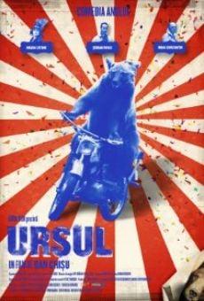 Ver película Ursul