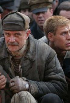 Ver película Utomlyonnye solntsem 2: Predstoyanie