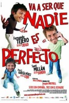 Ver película Va a ser que nadie es perfecto