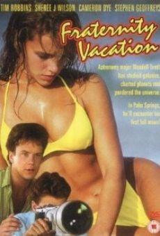 Ver película Vacaciones locas, locas, locas