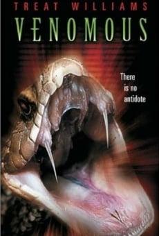 Ver película Veneno Mortal