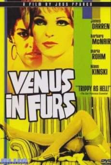 Ver película Venus in Fur