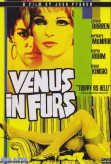 Venus in Fur on-line gratuito