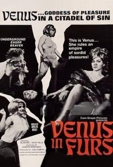 Ver película Venus in Furs