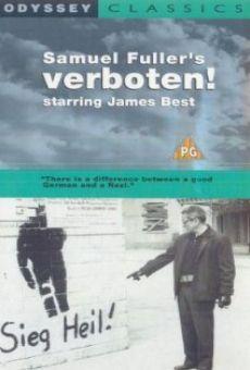 Ver película Verboten!