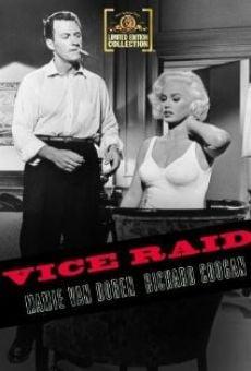 Ver película Vice Raid