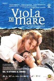 Ver película Viola di mare