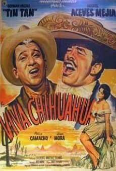 Ver película Viva Chihuahua