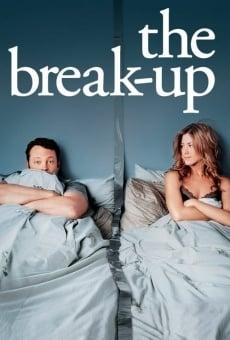 Ver película Viviendo con mi ex