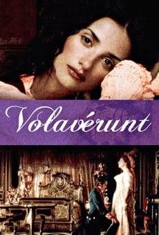 Ver película Volavérunt