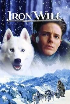 Ver película Voluntad de hierro