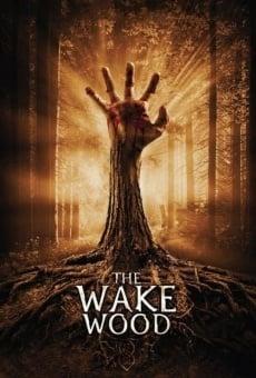 Ver película Wake Wood