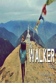 Walker online